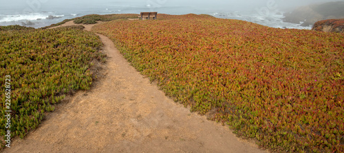 Keuken foto achterwand Verenigde Staten Bluff walking path with viewing bench on rugged Central California coastline at Cambria California United States