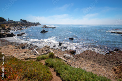 Keuken foto achterwand Verenigde Staten Driftwood log on rugged Central California coastline at Cambria California United States