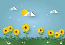 Sunflower Field Landscape. Fl...