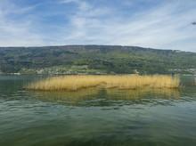 Le Lac De Bienne En Suisse Ape...