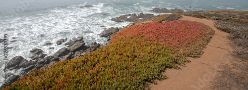 Keuken foto achterwand Verenigde Staten Coastal hiking path on rugged rocky Central California coastline at Cambria California United States
