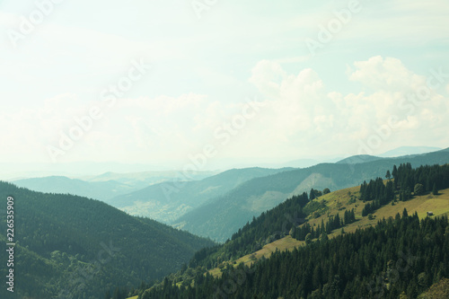 Foto op Canvas Wit Beautiful landscape with forest and mountain slopes