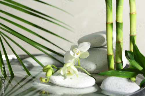 Spa stones, orchid and bamboo branches in water. Space for text