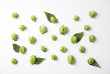 Fresh Green Hops On White Background, Top View. Beer Production