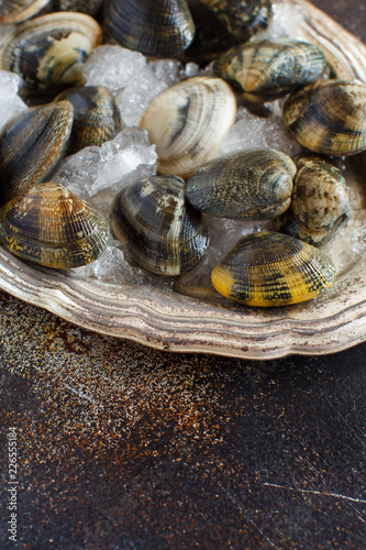 Metal tray with raw fresh vongole clams