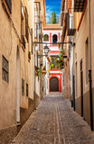 Fototapeta Uliczki - Narrow street in Granada, Spain