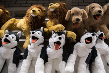 Cuddly Soft Toys Of Husky Dogs From The Kids Shop For Sale In A Gift Shop