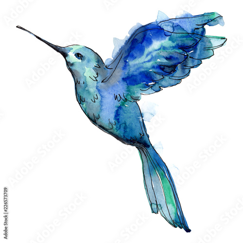 Sky bird blue colibri in a wildlife by watercolor style isolated Wallpaper Mural