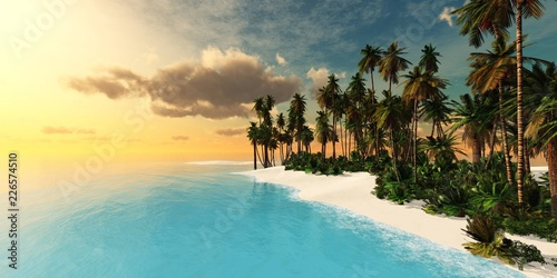 Foto op Canvas Zwavel geel Tropical beach with palm trees at sunset