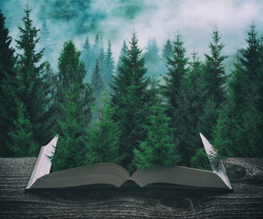 FototapetaMisty carpathian spruce forest on the pages of book