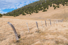 Rural Landscape Scene Of A Line Of Rustic, Weathered Fence Posts And Barbed Wire Crossing Grassy Fields On A Ranch In Northern New Mexico