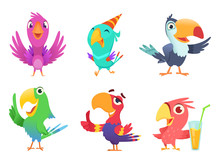 Cartoon Parrots Characters. Cute Feathered Birds With Colored Wings Funny Exotic Parrot Various Action Poses Vector Pictures Isolated. Parrot Animal Exotic, Bird Tropical Cartoon Illustration