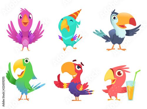 Fotografia Cartoon parrots characters