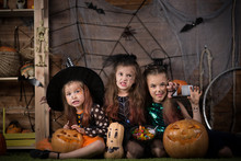 Children For The Holiday Halloween