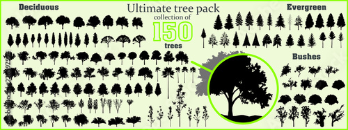 Ultimate tree collection, 150 detailed, different tree vectors