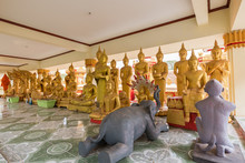 Two Animal Sculptures And Many Gilded Buddha Statues At The Wat That Luang Tai Temple In Vientiane, Laos.