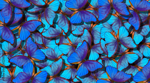 Fotografie, Obraz  Blue abstract texture background