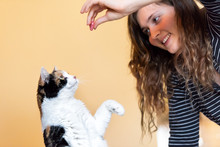 Young Woman, Pet Owner Teachin...