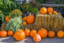 Pumpkin Display On Bales Of Hay