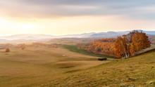 Autumn Grasslands Of Inner Mon...