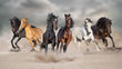 Horses run gallop free in desert dust against storm sky