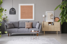 Real Photo Of A Cozy Living Room Interior With A Grey Sofa, Painting, Retro Cupboard And Plants