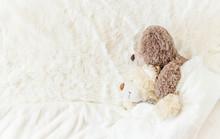 Children's Toy Sleeps Under Th...