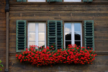 Typical Switzerland Wooden House Windows Decorated By Flower