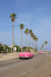 Havana, 2 Pink Cars, Palm, Road