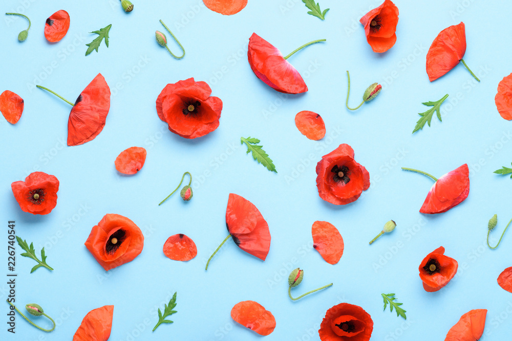 Poppy flowers pattern background top view flat lay