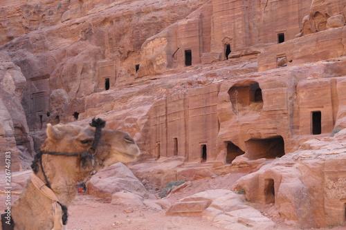 Fotografie, Obraz  Historic Masonry in the ancient city of Petra, Jordan