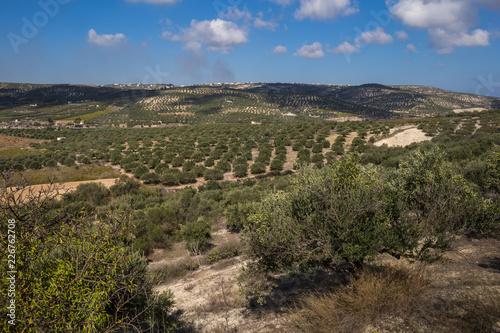 Keuken foto achterwand Verenigde Staten Fields and mountains, Crete, Greece