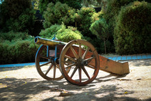 Cannon In The Courtyard Of Smo...