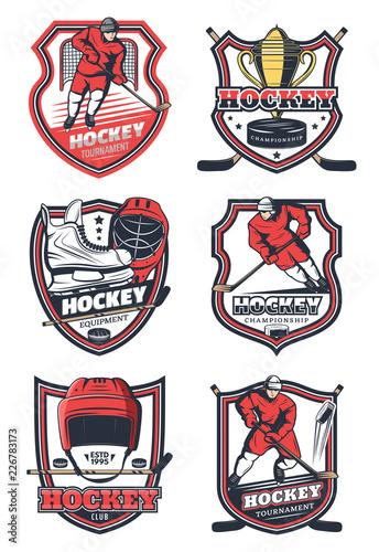 Ice hockey sport team, vector icons Canvas Print