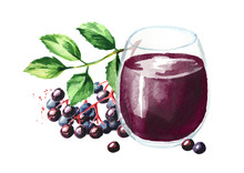 Glass Of Elderberry Syrup. Watercolor Hand Drawn Illustration, Isolated On White Background