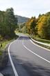 kurvige Straße durch Herbstwald in der Eifel