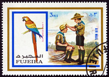 Postage Stamp Fujeira 1972 Scarlet Macaw, And Boy Scouts