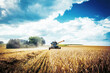 canvas print picture - Combine harvesters Agricultural machinery. The machine for harvesting grain crops.