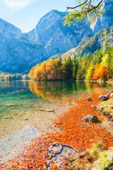 Panel Szklany Optyczne powiększenie Autumn trees with red-yellow leaves on the shore of lake in Alps mountains, Austria