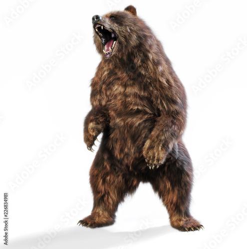 Fototapeta premium Duży niedźwiedź brunatny stojący w agresywnej postawie na na białym tle. Renderowanie 3d