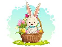 Cute White Rabbit Sitting In B...