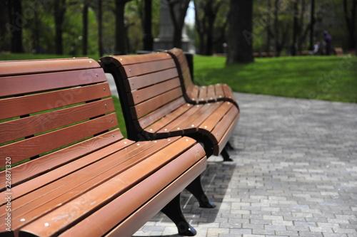Zdjęcie XXL Puste ławki parku w Montrealu