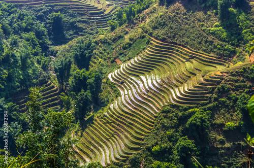 Foto  Amazing view on rice terrace in Sapa village, Vietnam