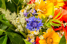 Luxuriant Summer Bouquet Of Wildflowers With Poppies, Daisies, Cornflowers Closeup.