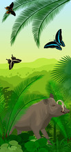 Vector Jungle Rainforest Vertical Baner With  North Sulawesi Babirusa And Butterflies