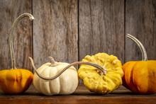 Ornamental Gourds On Rustic Wood