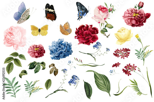 Various romantic flower and leaf illustrations Fototapete