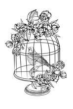 Bird And Cages. Detailed Drawing Of A Bird. Vector Illustration Isolated On White Background