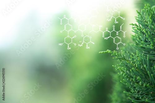 Carta da parati  Plants background with biochemistry structure.