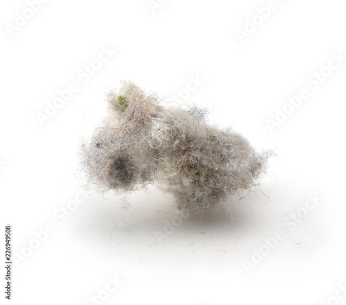 Photo Common house hold dust, high magnification macro, isolated on white